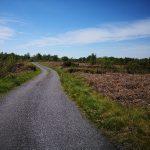 Bog Road